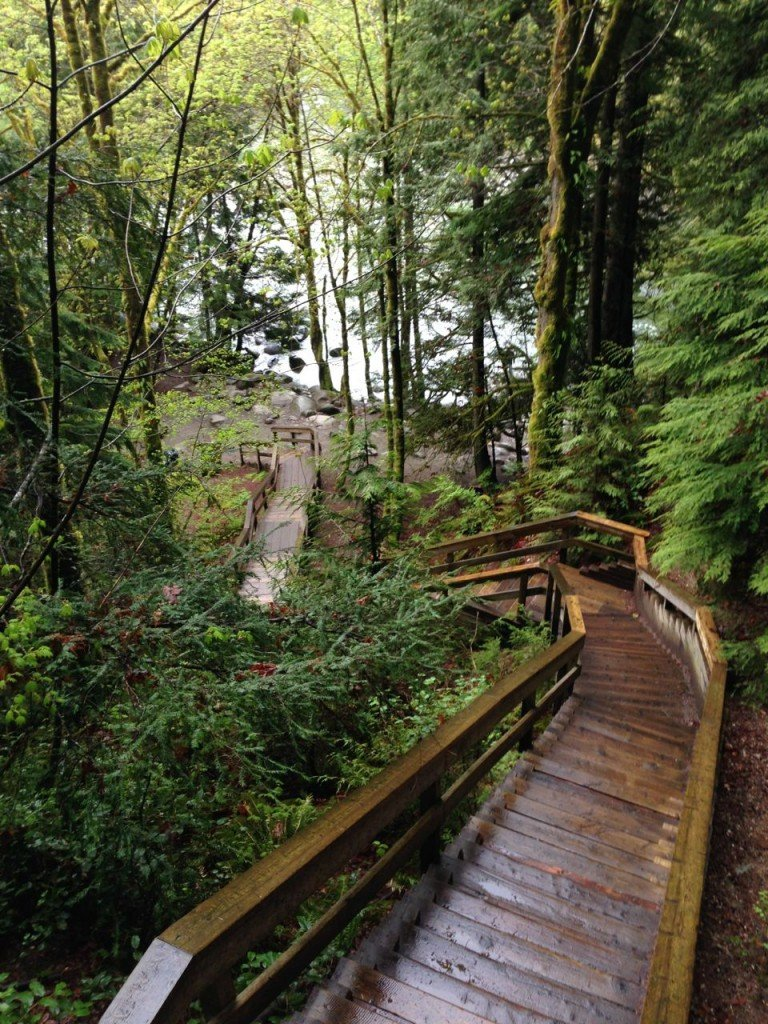 Lynn canyon boardwalks and stairs