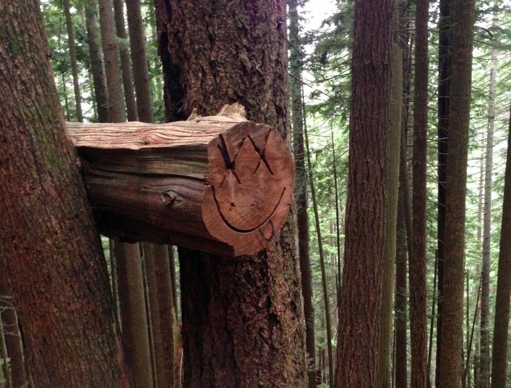 BCMC Trail smile