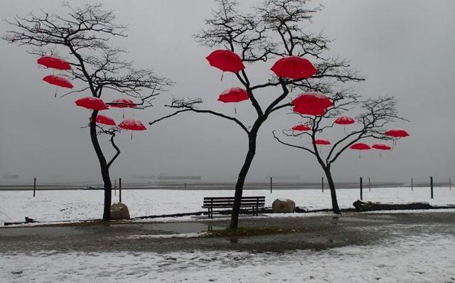 Red umbrellas at Spanish Banks