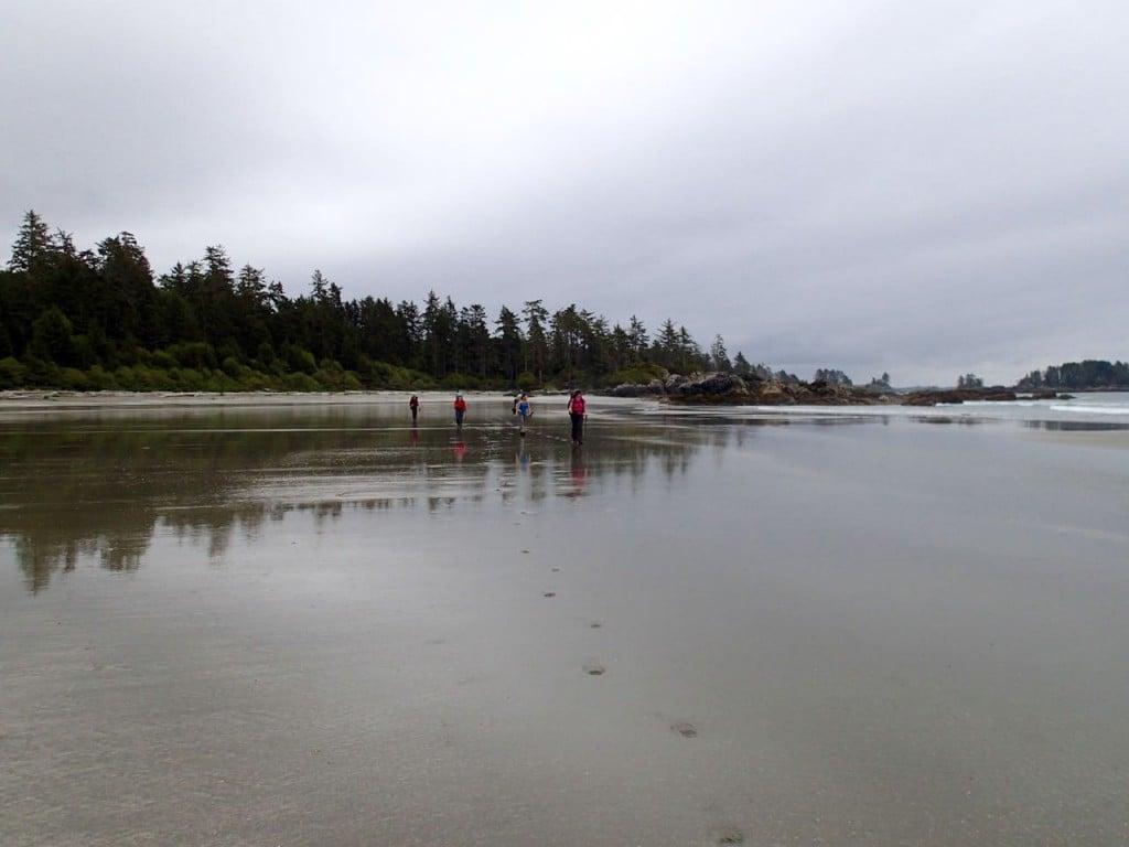 Beach walking on the Walk the Wildside Trail