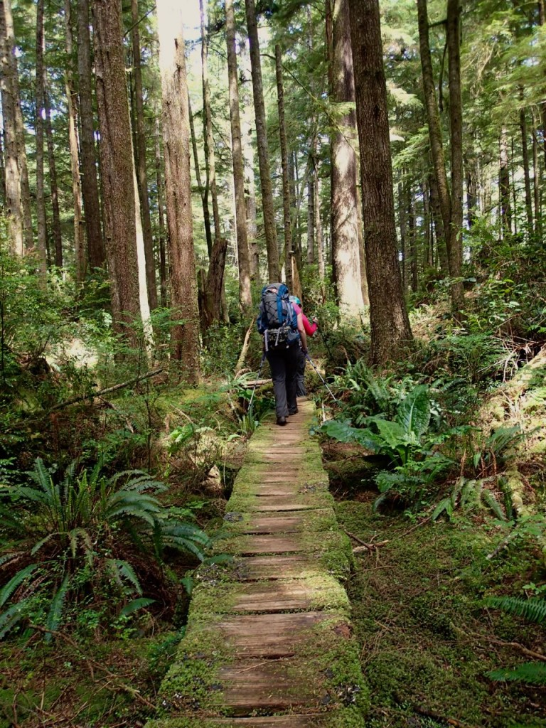Hiking on boardwalk on the Wild Side Trail near Tofino, BC