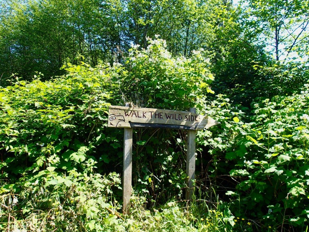 Walk the Wildside Trail