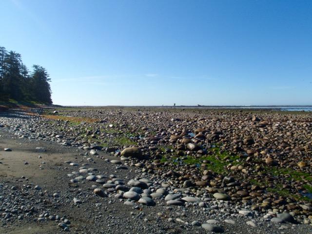 Hiking near Bajo Point the Nootka Trail