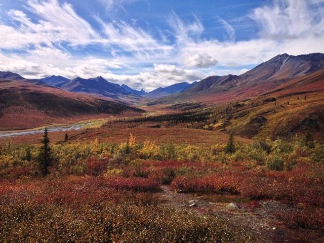 Autumn in Tombstone Territorial Park