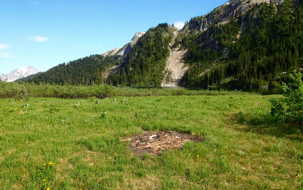 Old fire scar at Tenquille Lake