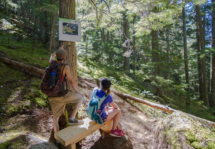 The Blackcomb Burn is Whistler's answer to the Grouse Grind.