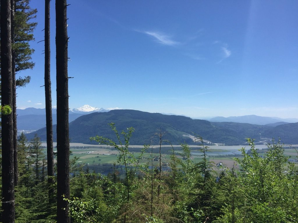 The Dewdney Grind in Mission BC is very steep! Even steeper than the Grouse Grind.