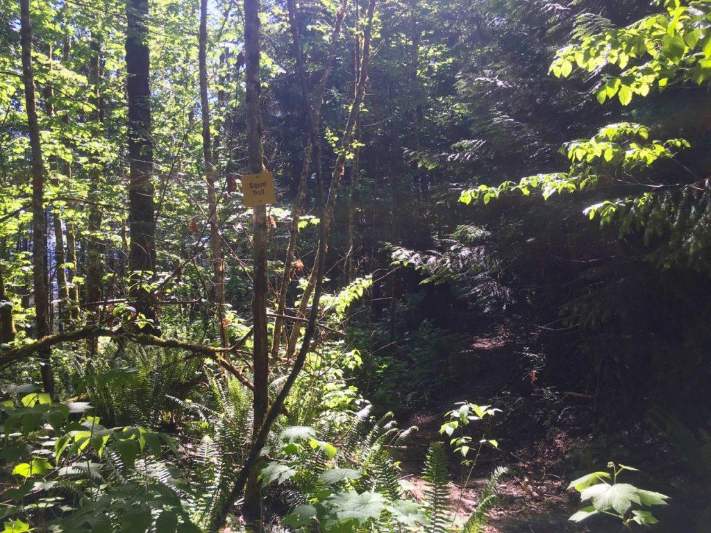 Sigurd Trail sign - Crooked Falls