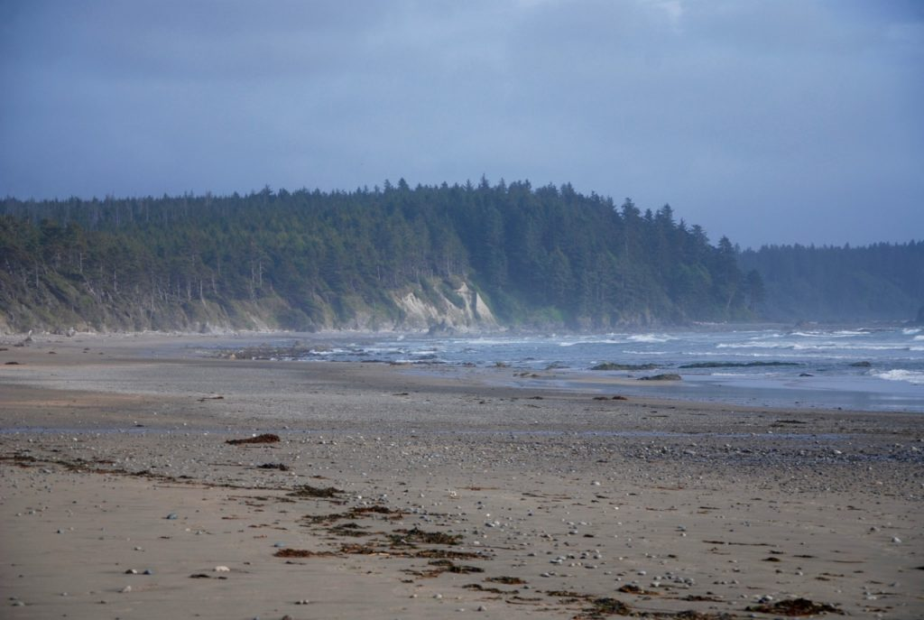 South Sand Point on the Ozette Loop