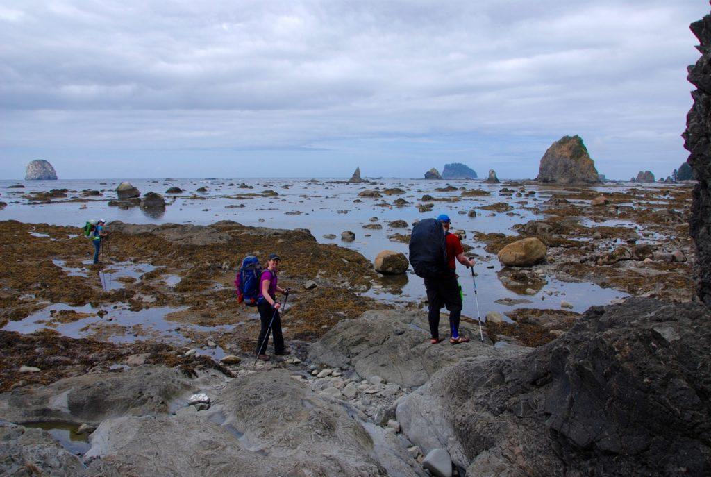 Coast hiking on the Ozette Loop