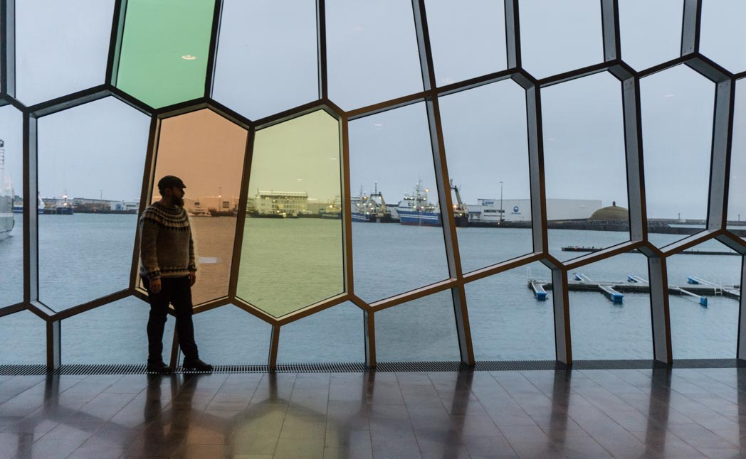 Lopapeysa Icelandic sweater at Harpa: 7 Things You Might Not Know About Iceland in Winter