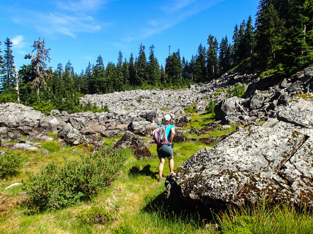 Sometimes trails are hard to follow. Be prepared before your next hike: use this handy list of websites to find trail conditions for Vancouver area hikes.