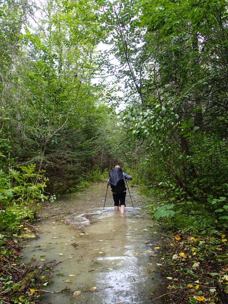 Flooded trails can really wreck a hike. Be prepared before your next hike: use this handy list of websites to find trail conditions for Vancouver area hikes.