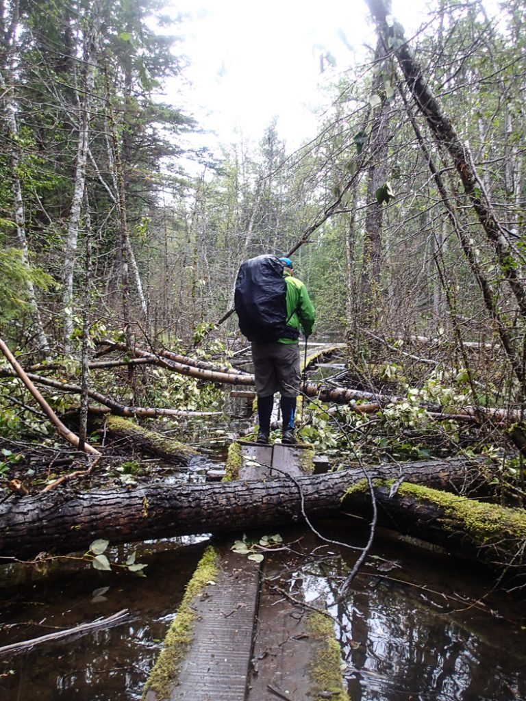 Storms can take a toll on trails. Be prepared before your next hike: use this handy list of websites to find trail conditions for Vancouver area hikes.