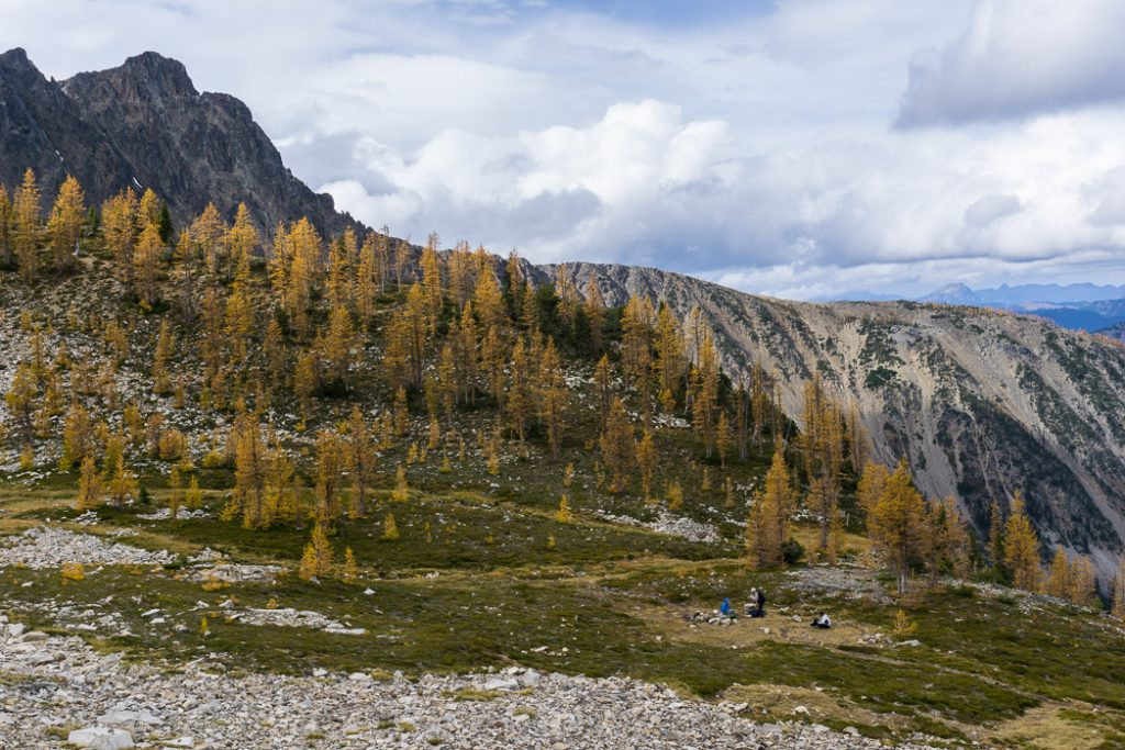 Hike to the gorgeous Frosty Mountain larches in British Columbia, Canada. Go hiking in the fall to the see the larch trees change colour in Manning Park, BC, Canada.