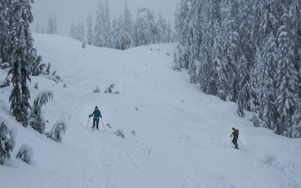 Snowshoeing at Hollyburn Mountain near Vancouver, BC. The Ultimate Guide to Snowshoeing in Vancouver.