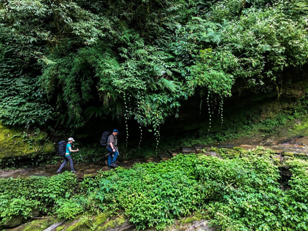 Trekking through the jungle at lower elevations on the Annapurna Base Camp trek. What to pack for the Annapurna Base Camp Trek in Nepal.