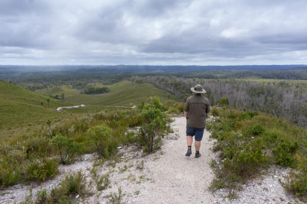 Milkshake Hills on the Tarkine Drive in Tasmania
