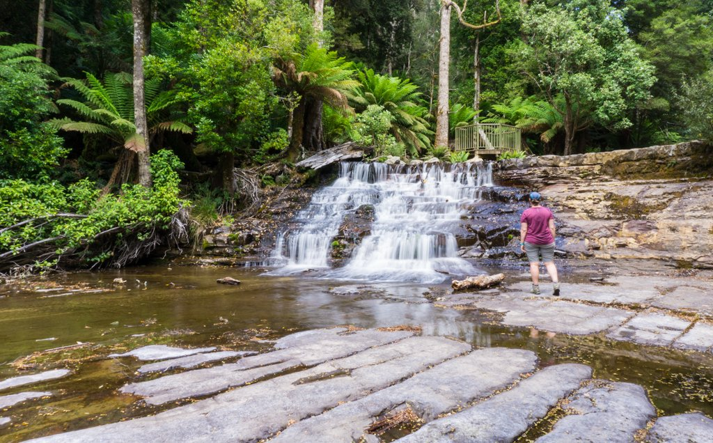 A hiker stands in front of Upper Liffey Falls in Tasmania