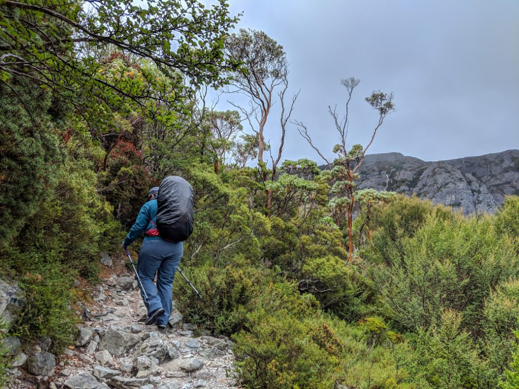It can rain a lot on the Overland Track. I recommend bringing a rain cover for your backpack. Find out what else to pack for the Overland Track