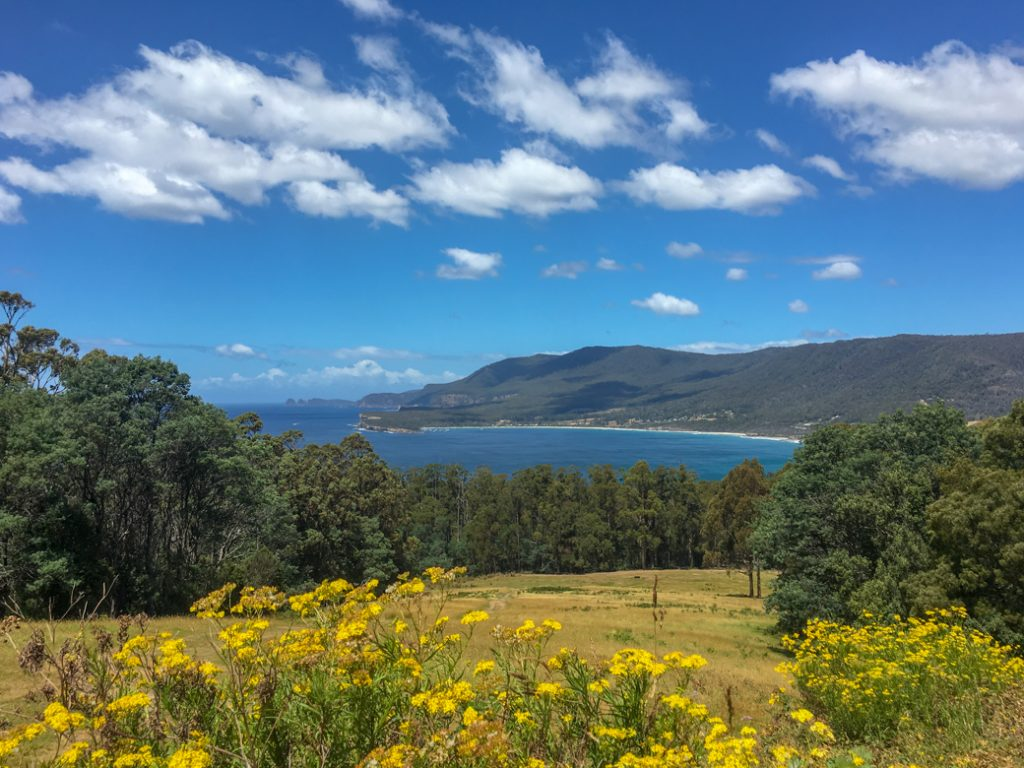 Pirate's Bay Lookout on the Tasman Peninsula in Tasmania, Australia
