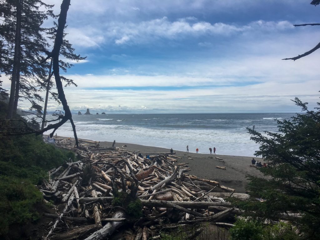 Third Beach in Olympic National Park