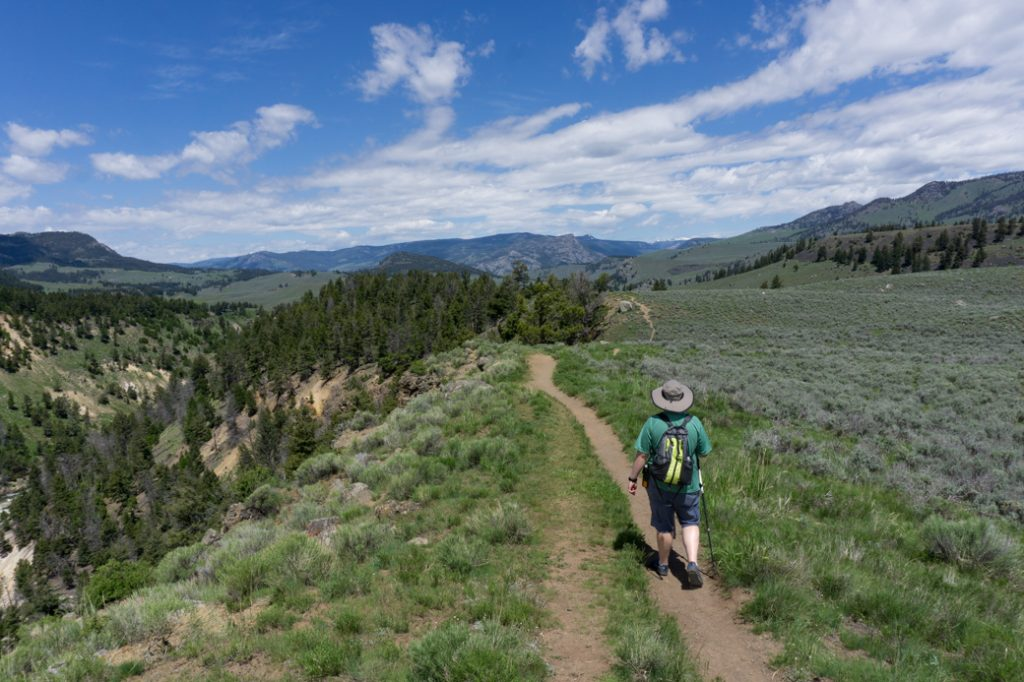 A hiker on a trail above the Yellowstone River