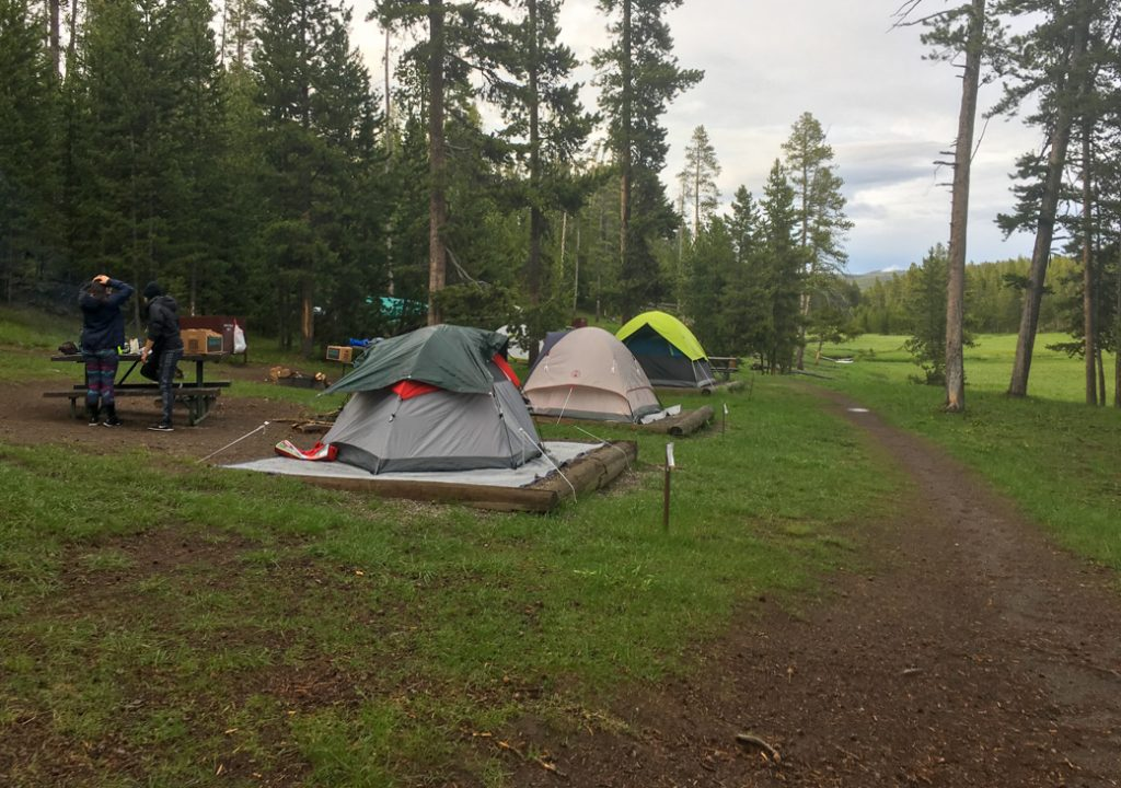 Three tents in Norris Campground in Yosemite National Park on a rainy day. A waterproof tent is on my Yellowstone packing list.