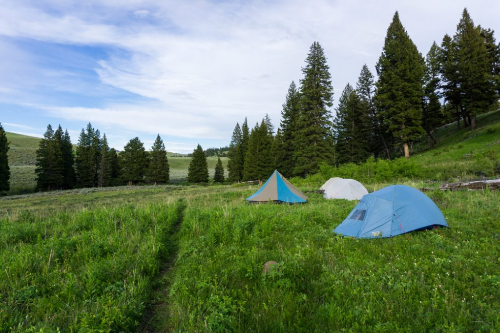 Backcountry campsite at Blacktail Creek in Yellowstone National Park