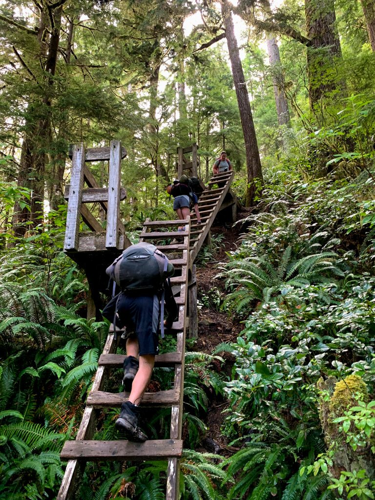 Hikers climbing ladders out of Camper Bay on the West Coast Trail