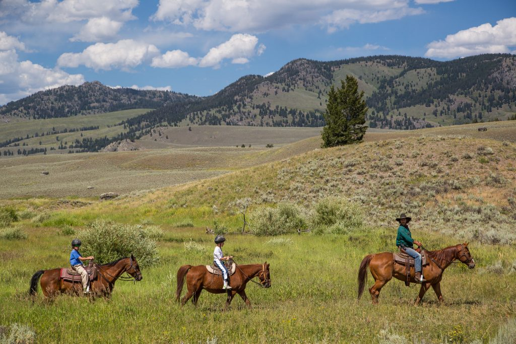Horseback riding in Yellowstone