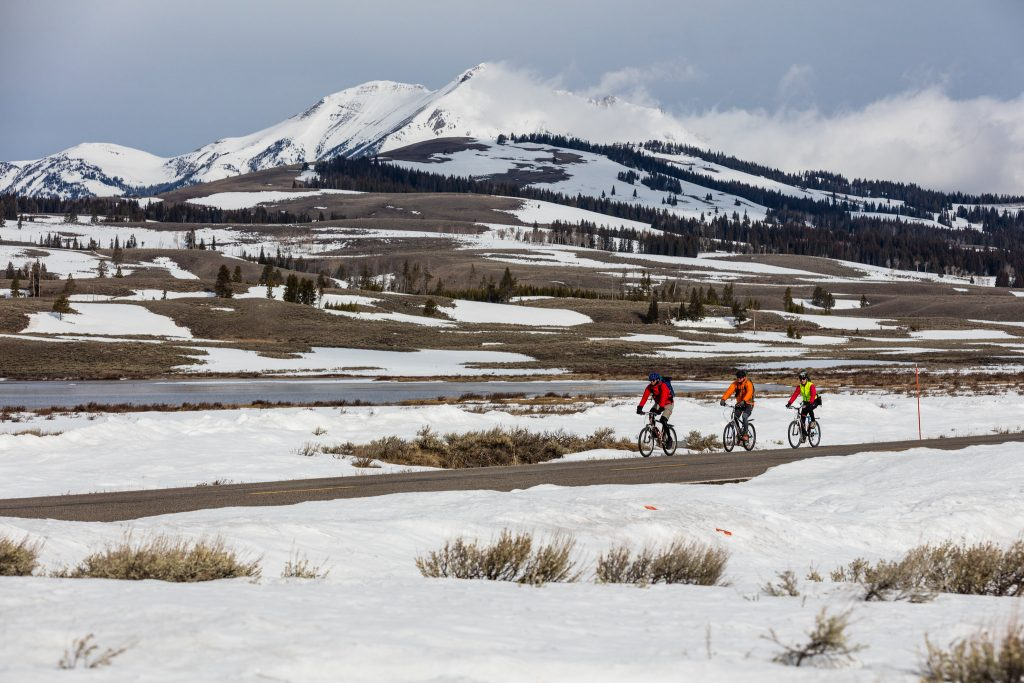 Spring biking in Yellowstone