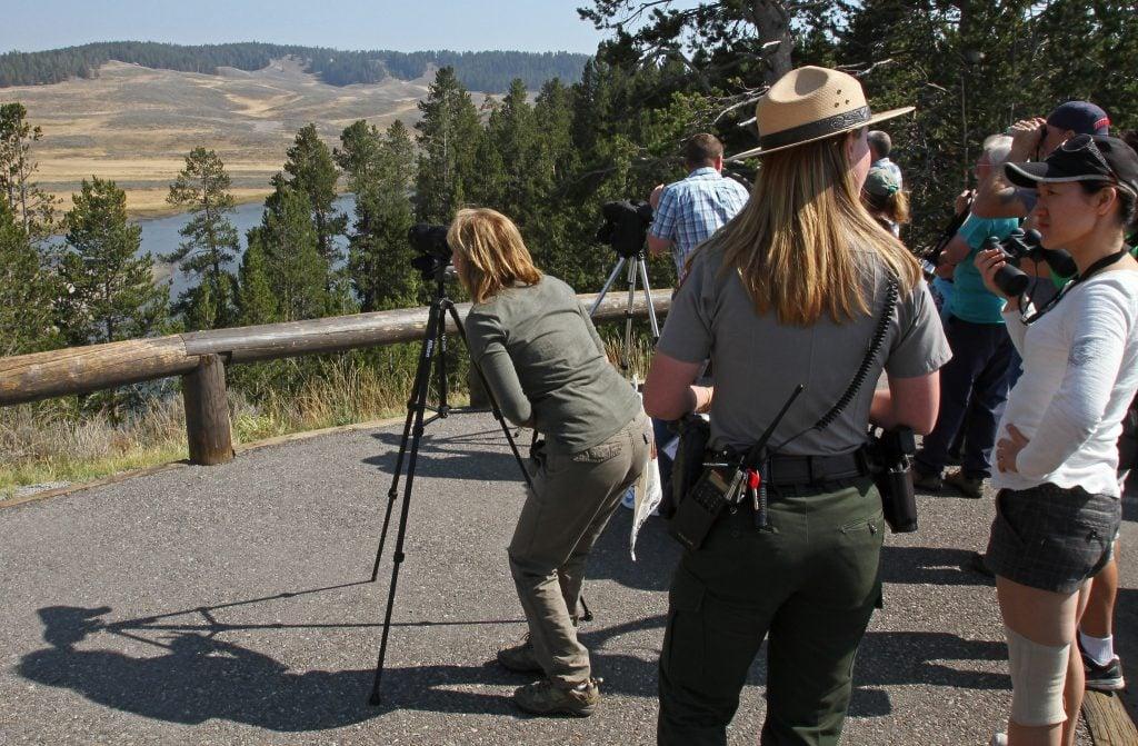Tourists looking through binoculars at Hayden Valley in Yellowstone