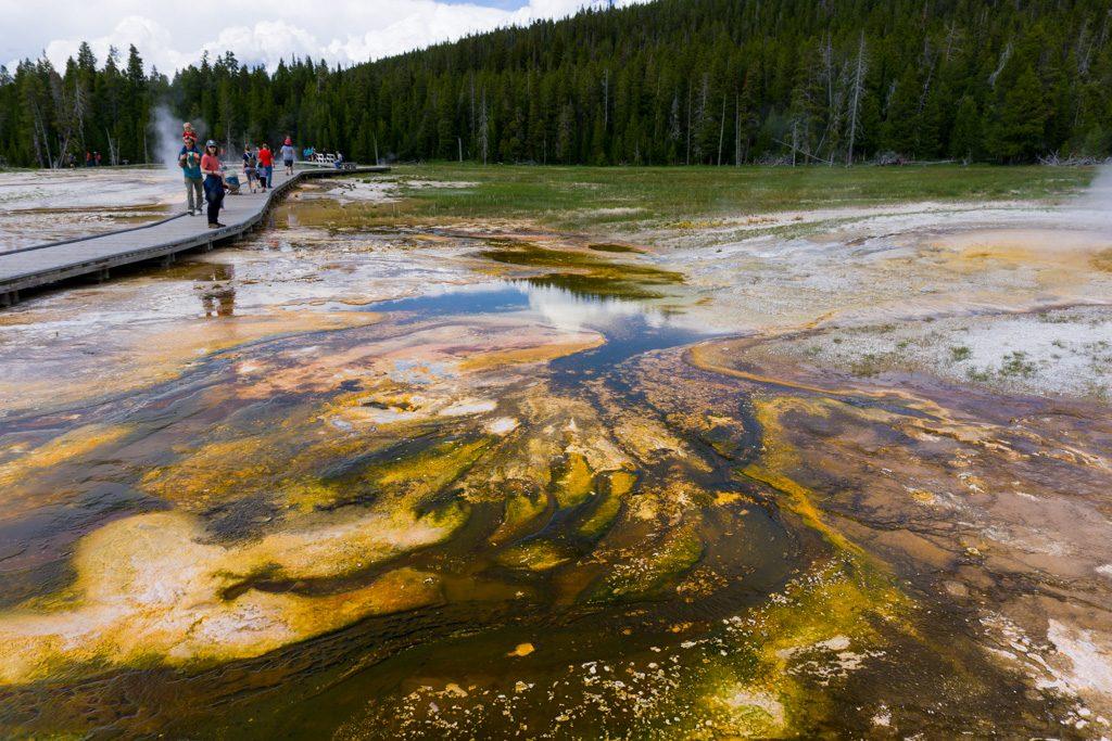 Upper Geyser Basin in Yellowstone National Park
