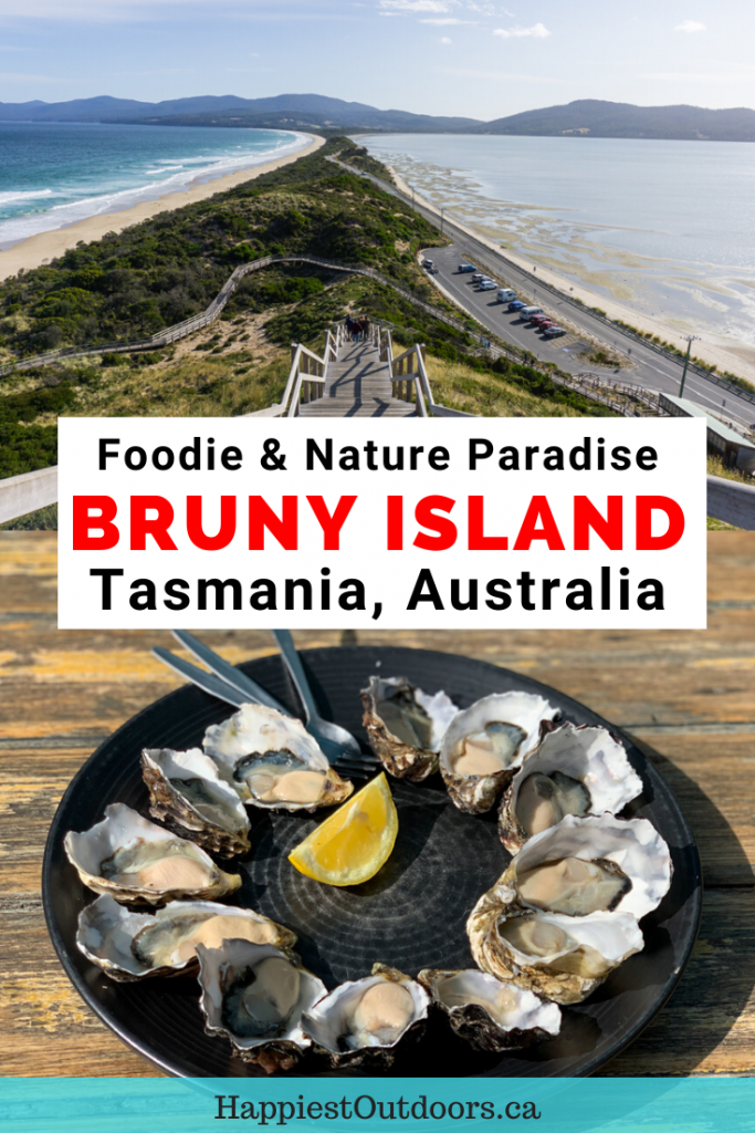 Visit Bruny Island in Tasmania, Australia. It's a great destination for both foodies and nature-lovers. Take a tour or drive yourself since it's close to Hobart. Go hiking, taste fresh produce, and visit the lighthouse. #BrunyIsland #tasmania #Australia