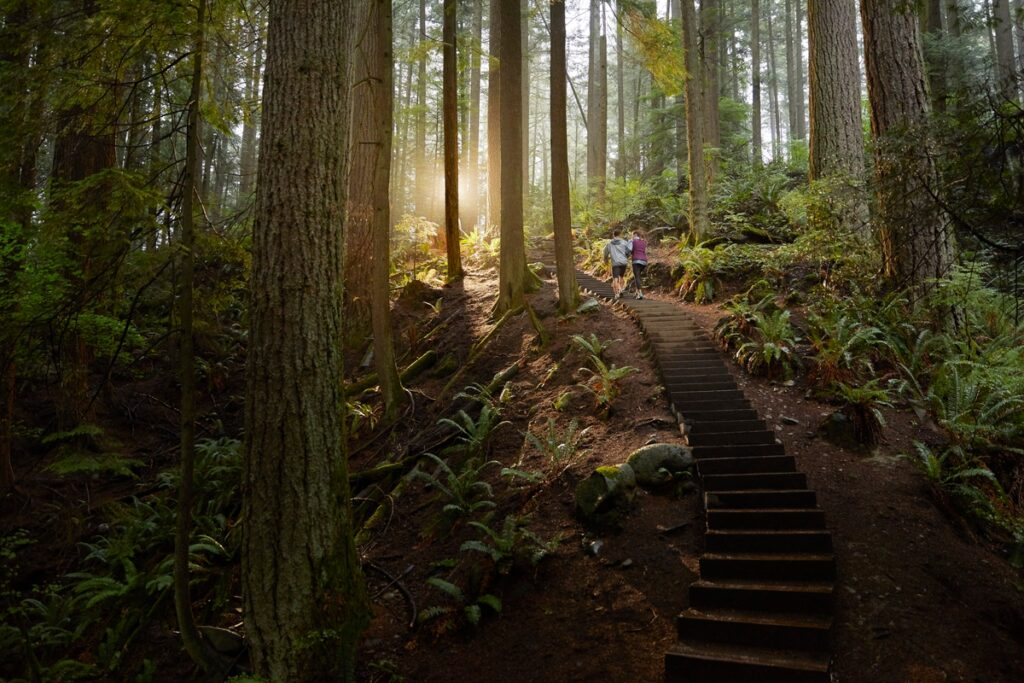 Hikers on the Grouse Grind in Vancouver