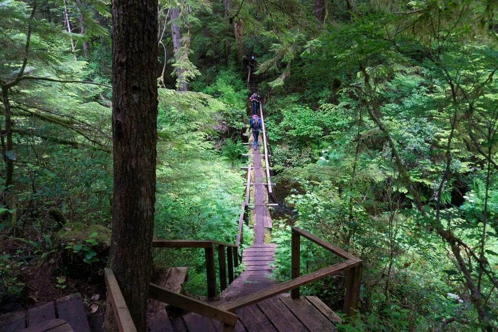 Bridge on the Cape Scott Trail near Eric Lake