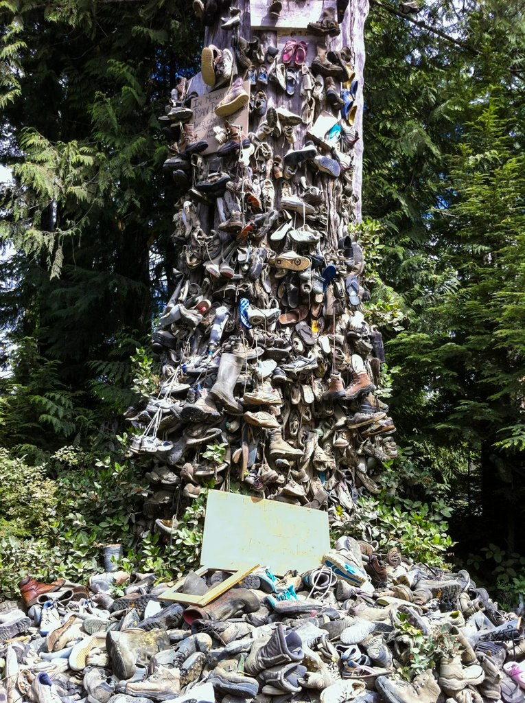 The famous shoe tree on the road between Port Hardy and Holberg on Northern Vancouver Island