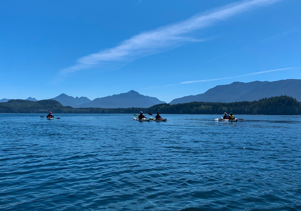 A group of kayakers in the Johnstone Strait - one the best things to do on north Vancouver Island