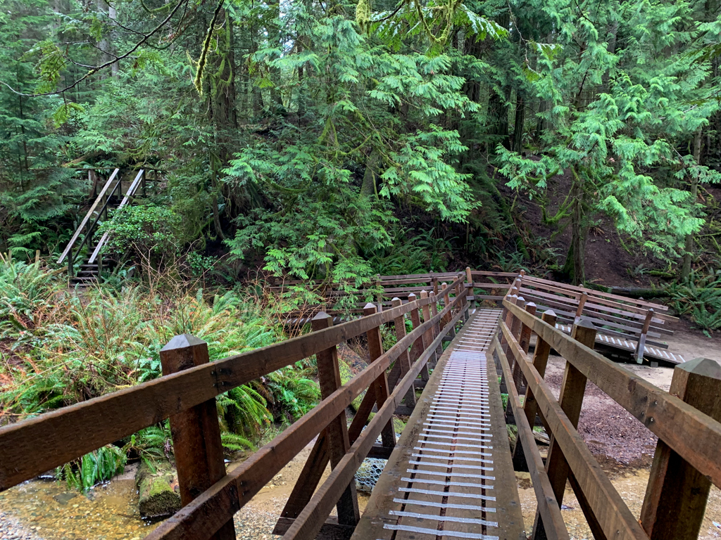 A long wooden bridge over a creek in Cliff Gilker Park on the Sunshine Coast, Canada