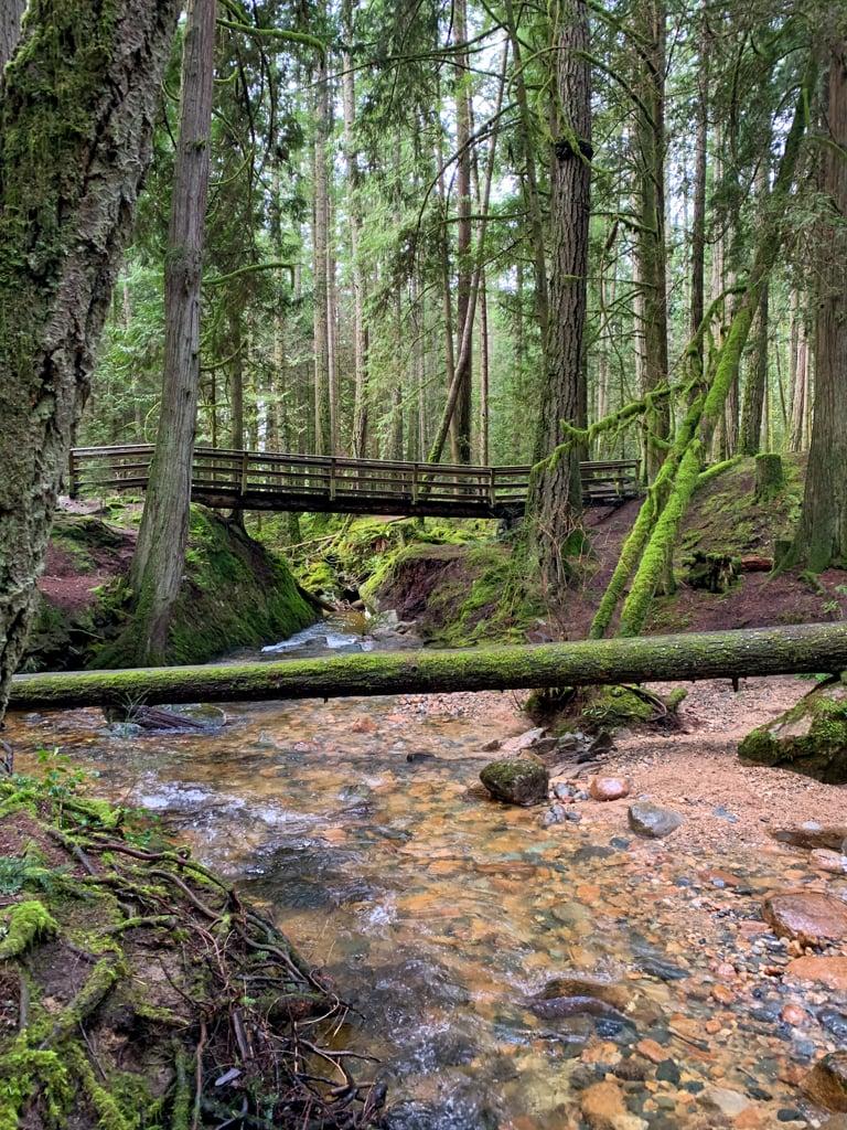 A bridge crosses a rocky gap across Clack Creek in Cliff Gilker Park on the Sunshine Coast, BC