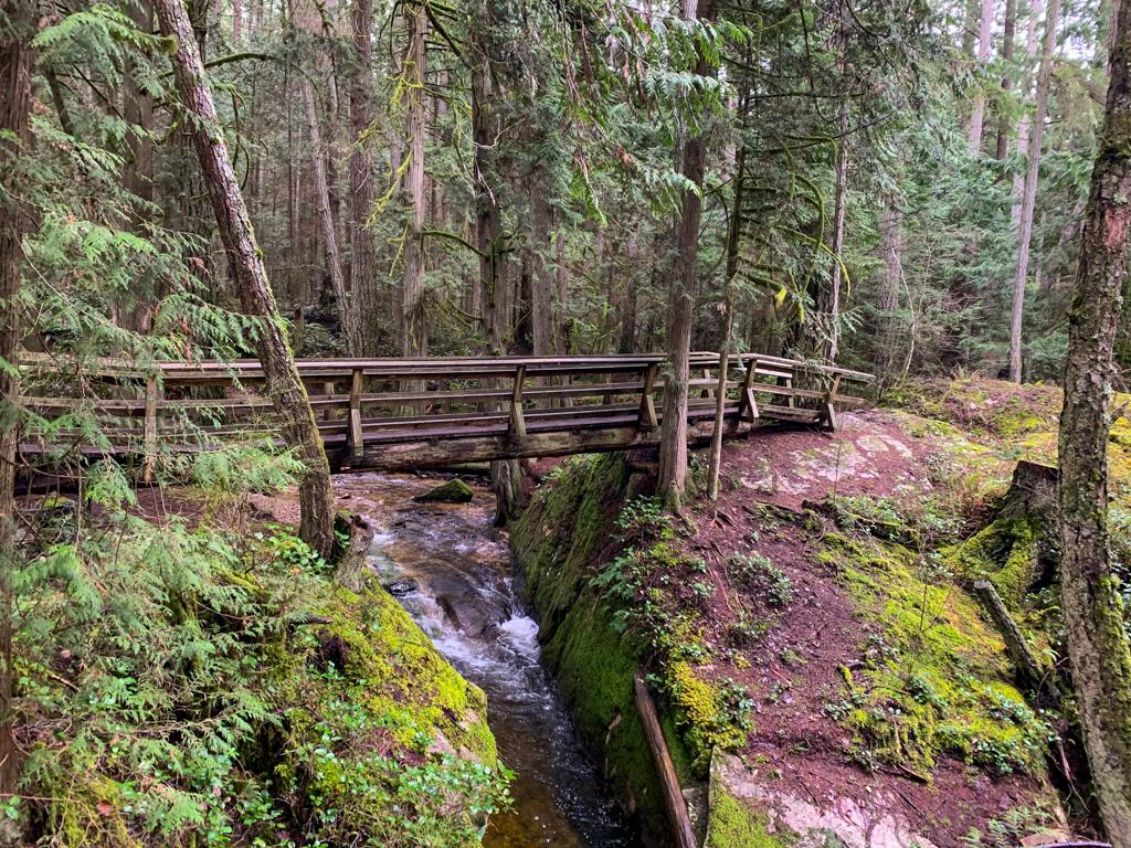 A bridge over a creek in Roberts Creek, BC