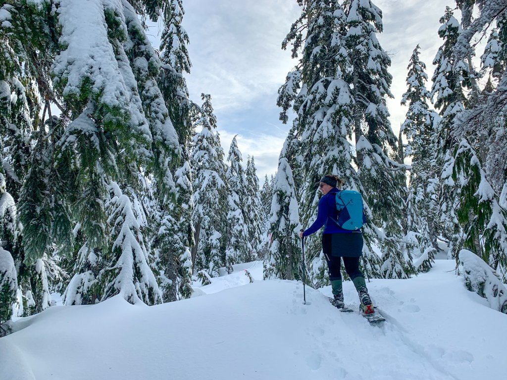 A woman wearing snowshoes and a backpack walks through a snowy forest