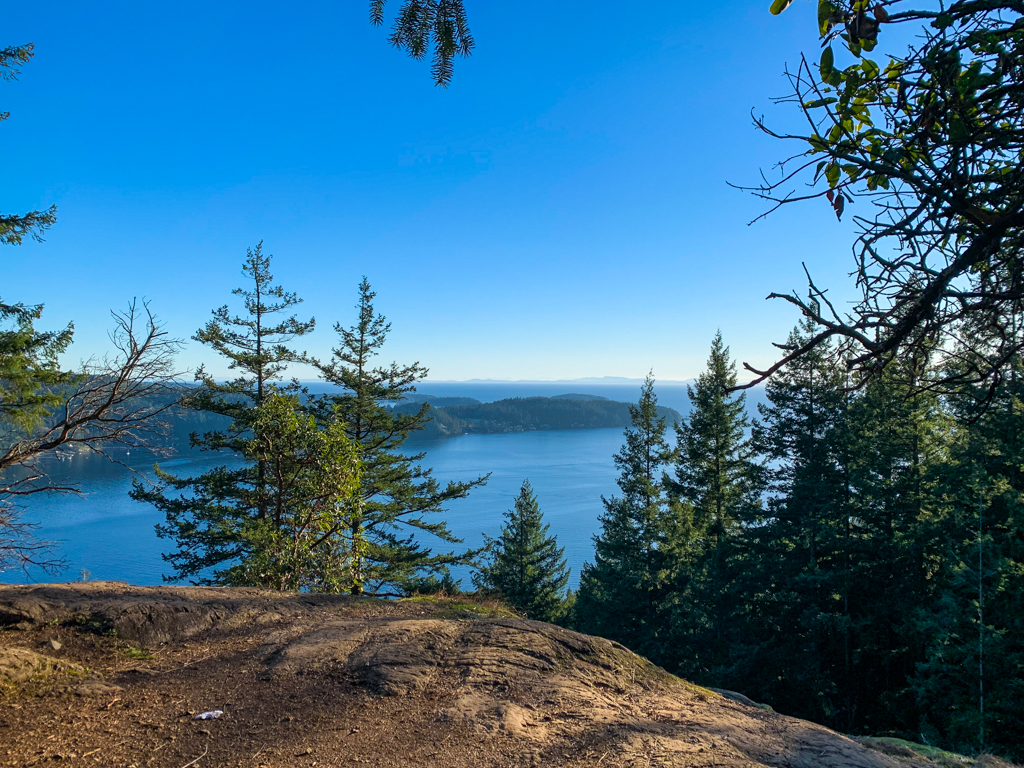 View of the ocean partially obscured by trees on the Soames Hill hike on the Sunshine Coast, BC