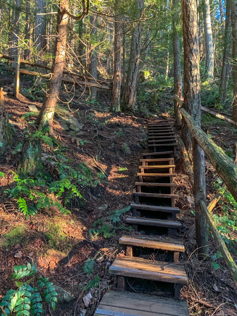 Stairs on a trail in Gibsons, BC