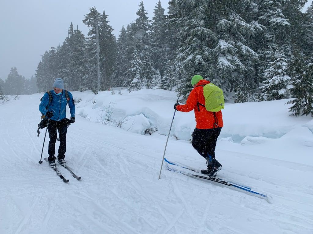 People cross country skiing at Dakota Ridge near Sechelt on BC's Sunshine Coast
