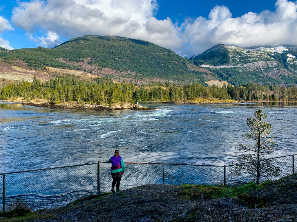 A woman standing at a fence looking at tidal rapids on the Sunshine Coast, BC