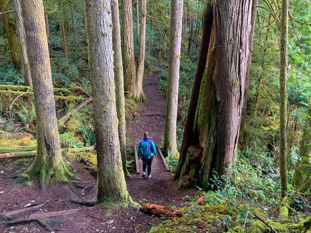 A woman walks along a forested trail in Egmont on the Sunshine Coast, BC