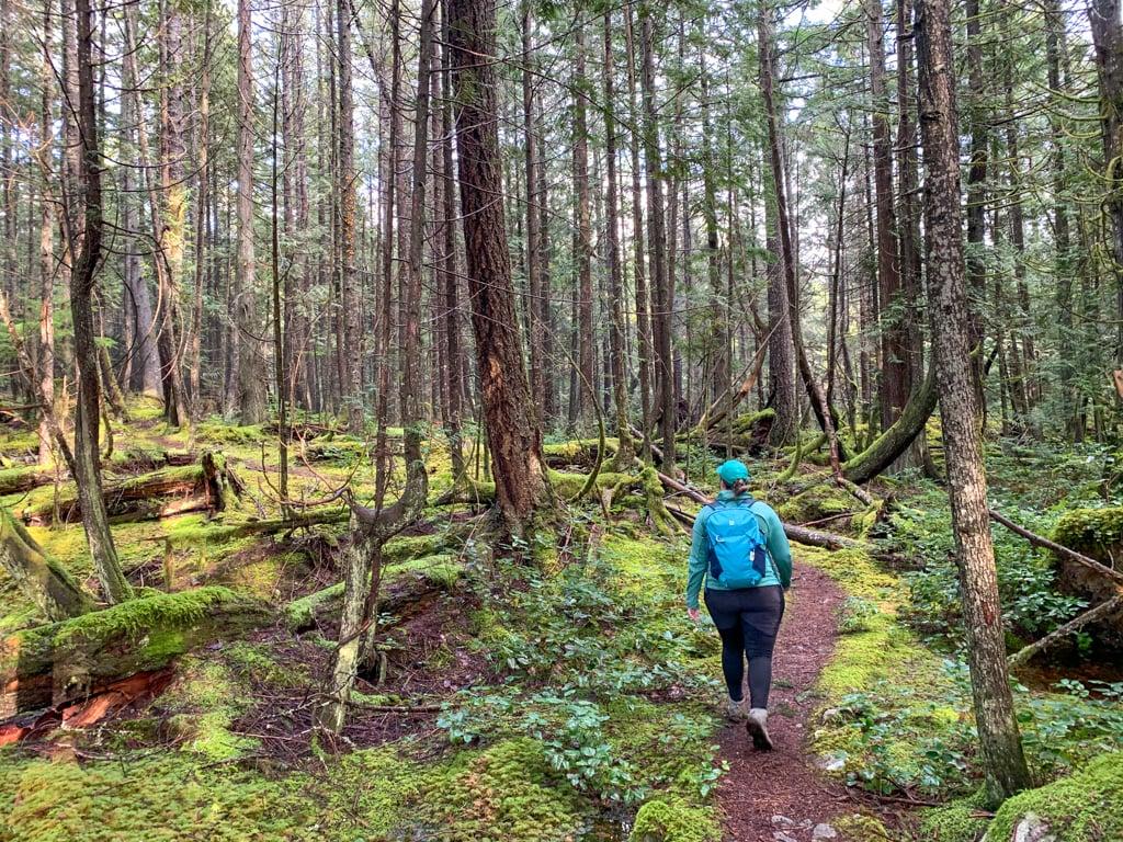 The trail to Triangle Lake near Halfmoon Bay on the Sunshine Coast, BC