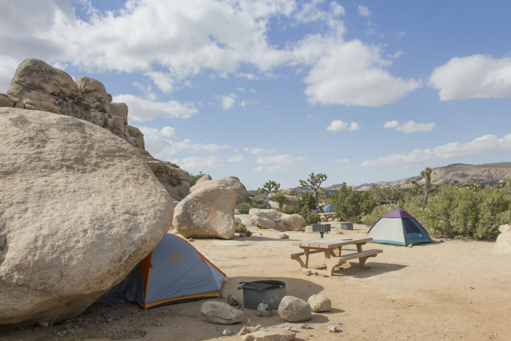 Tents at the Ryan Campground - one of the best reservable campgrounds in Joshua Tree National Park